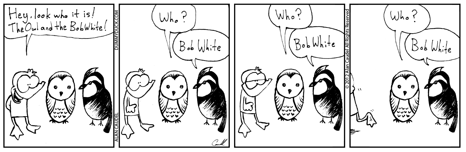 The Owl And The Bobwhite