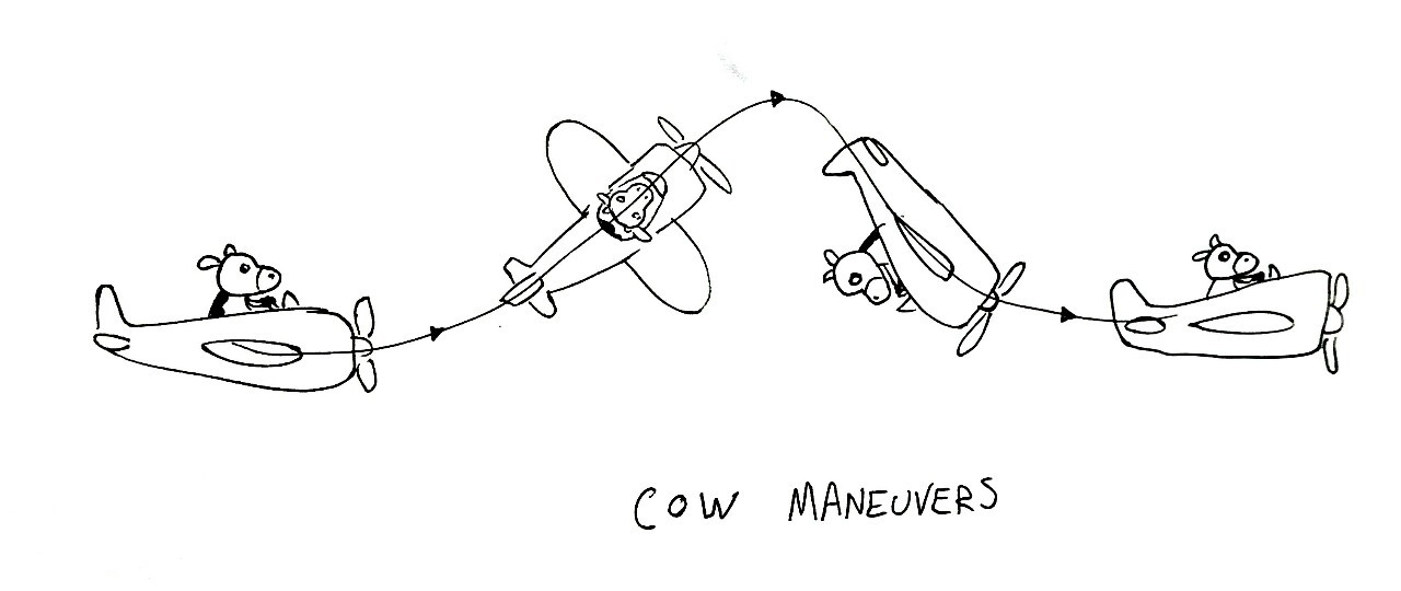 Cow Maneuvers
